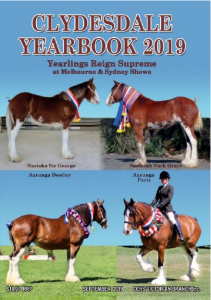 2019 Yearbook